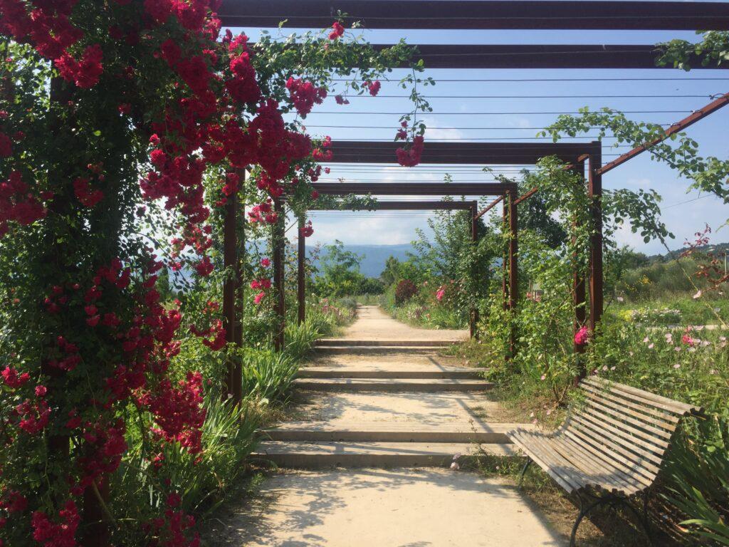 Jardin du MIP, Grasse